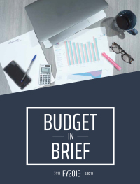 FY19 Budget in Brief Cover