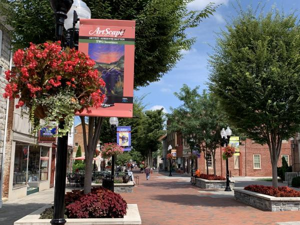 South end of the Loudoun Street Mall featuring a light pole banner and hanging flower basket